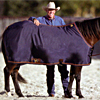 Big D Nylon Stable Sheet